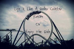 Sumber foto: http://4.bp.blogspot.com/-xpax69A_zRU/UhJNFB-CaVI/AAAAAAAAJ1s/fMItqP1qYgU/s1600/Life+Is+Like+A+Rollercoaster.jpg